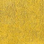 Graccioza Mustard
